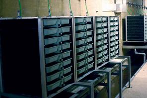 Brutschränke Lachszentrum Hasper Talsperre 2002