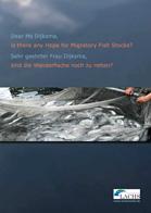 Sind die Wanderfische noch zu retten?