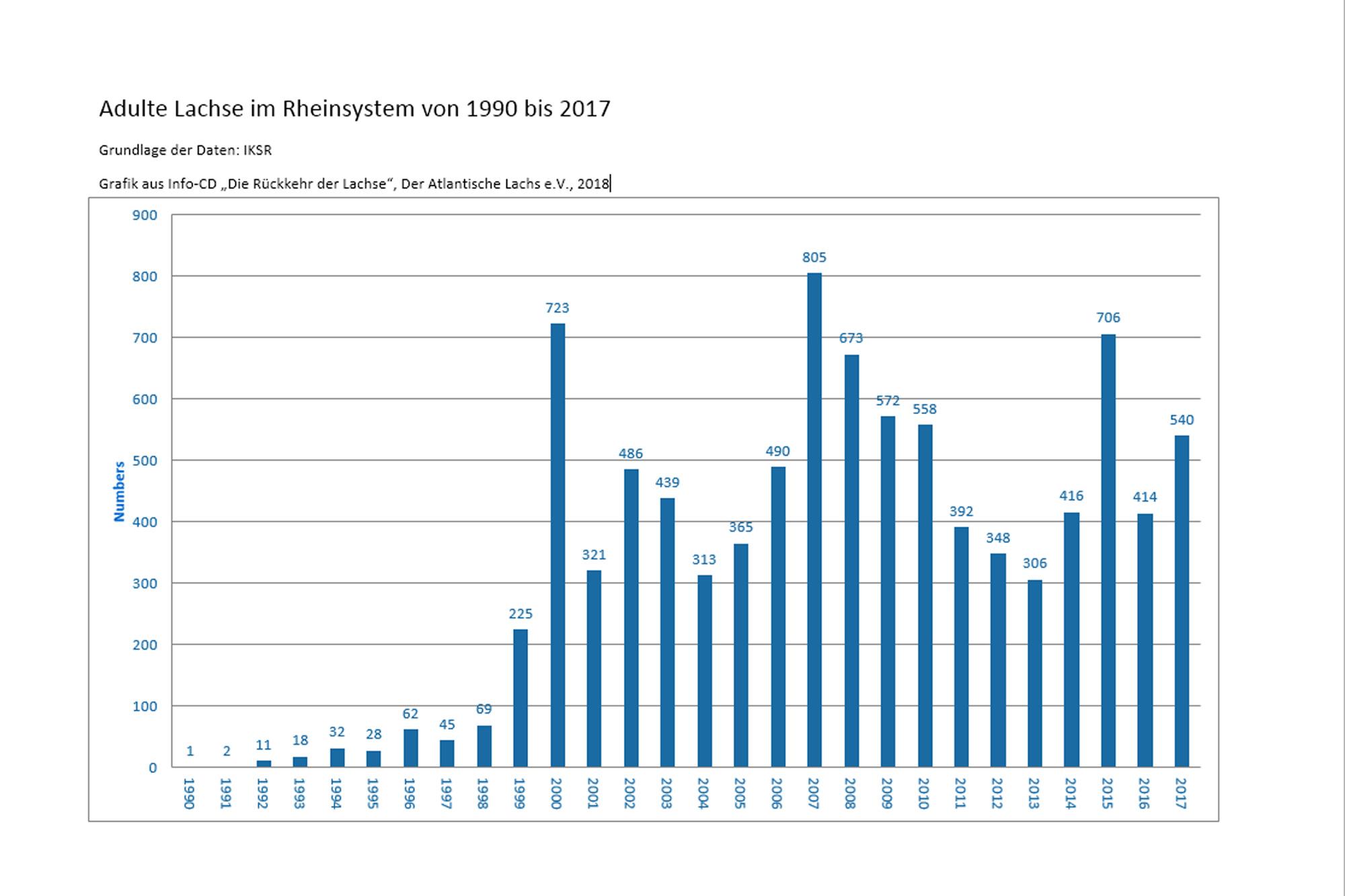 Tabelle Lachsrückkehrer Rhein seit 1990