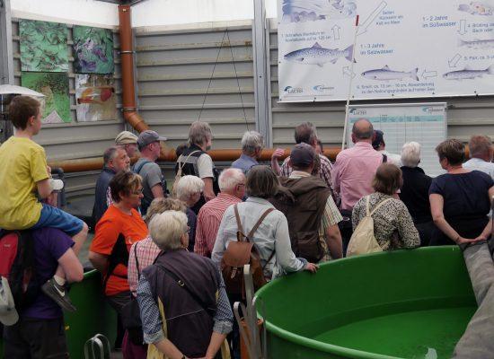 Europawochen Lachszentrum Hasper Talsperre