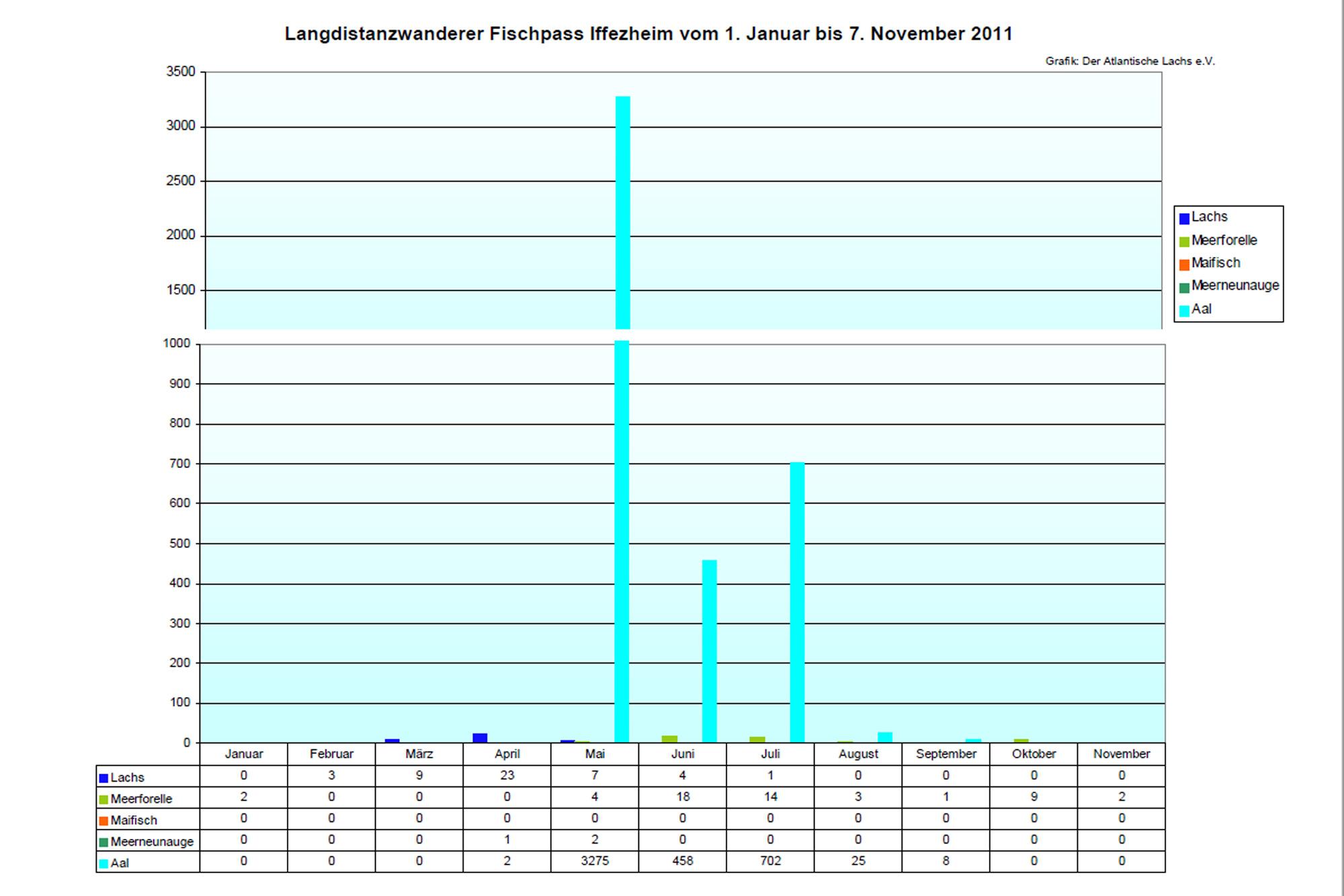 Rückkehrerstatistik Iffezheim und Gambsheim, 2007