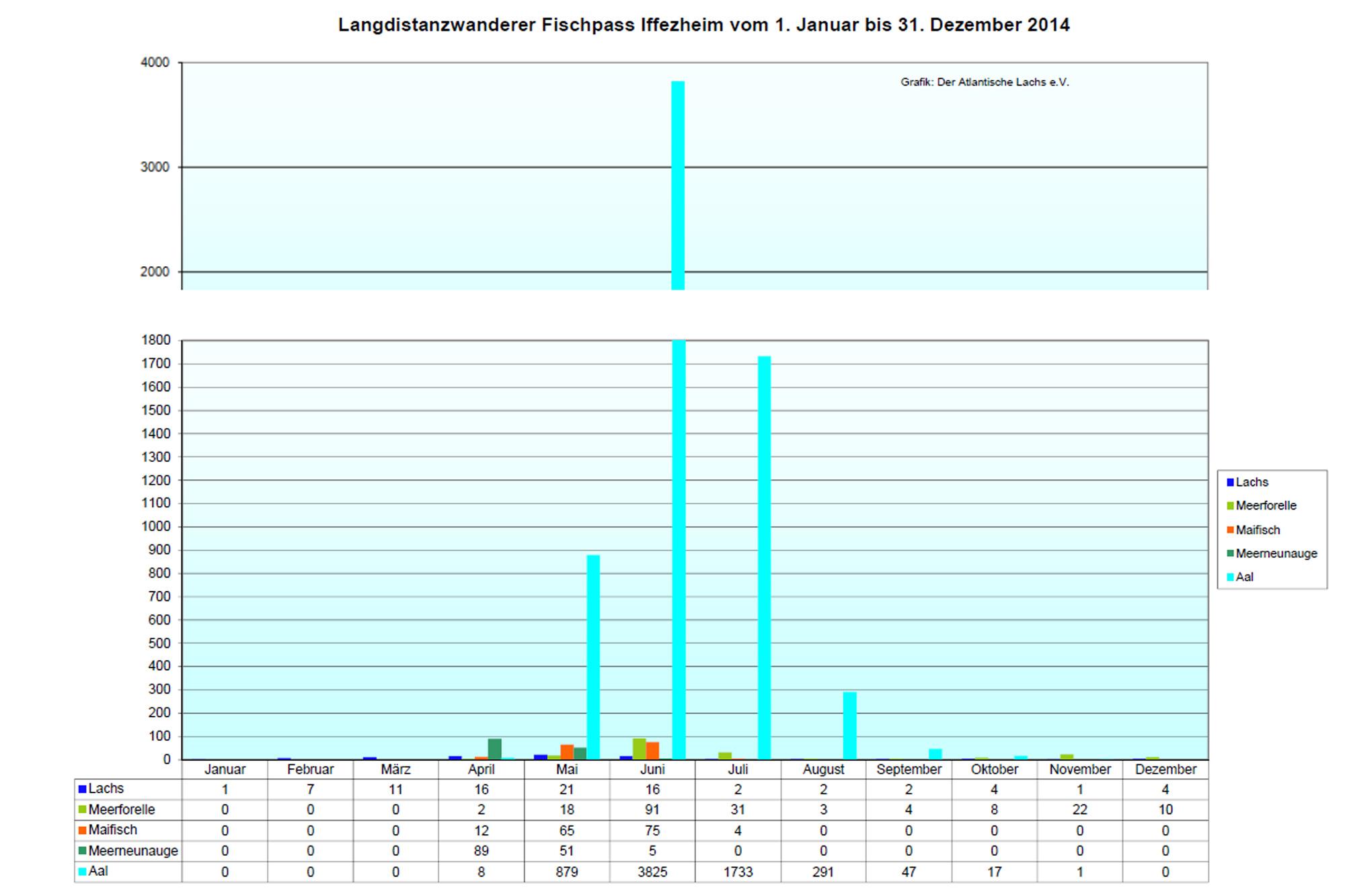 Rückkehrerstatistik Iffezheim 2014
