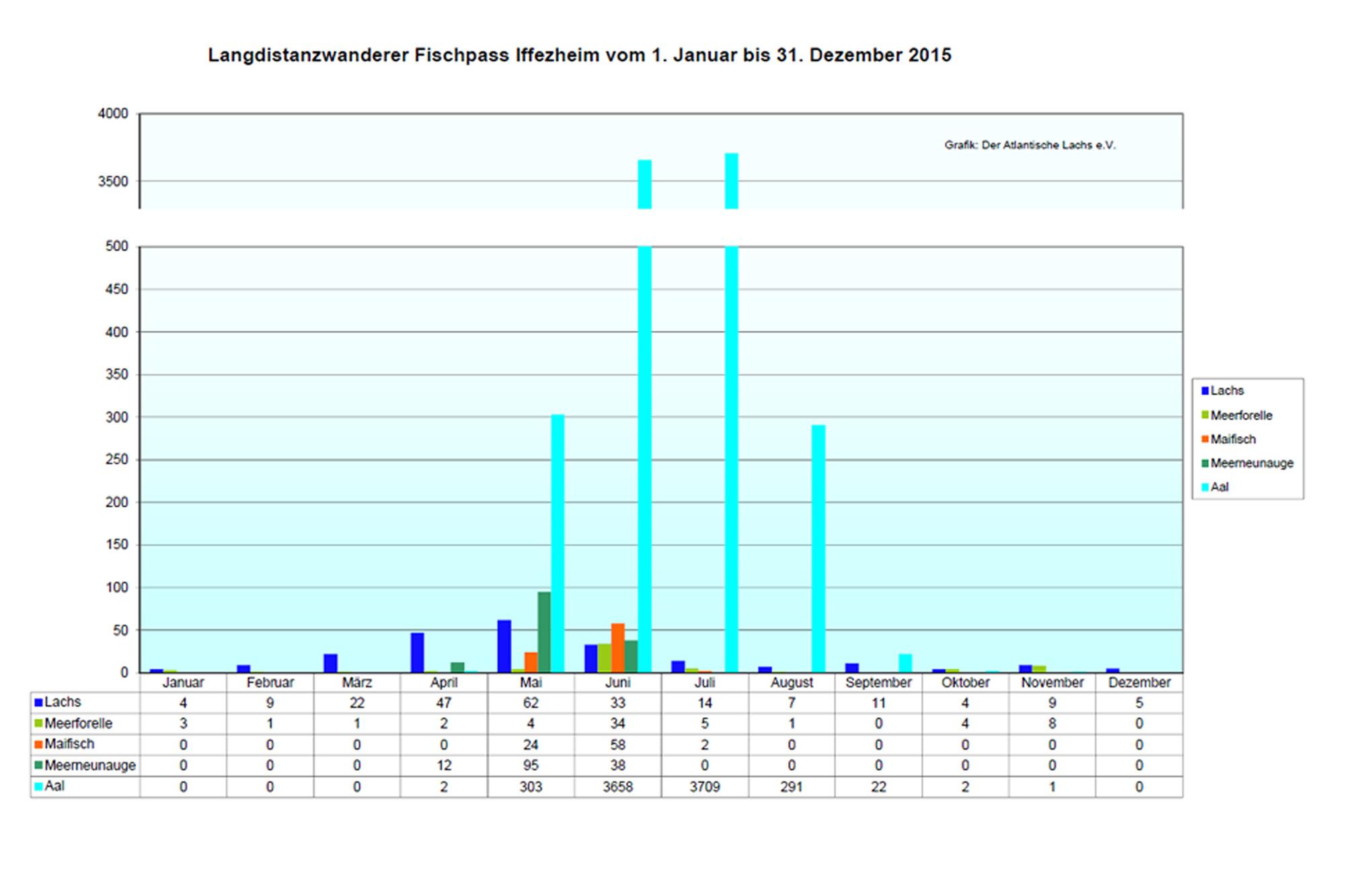 Rückkehrerstatistik Iffezheim 2015