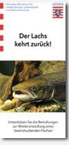 Lachsflyer Hessen