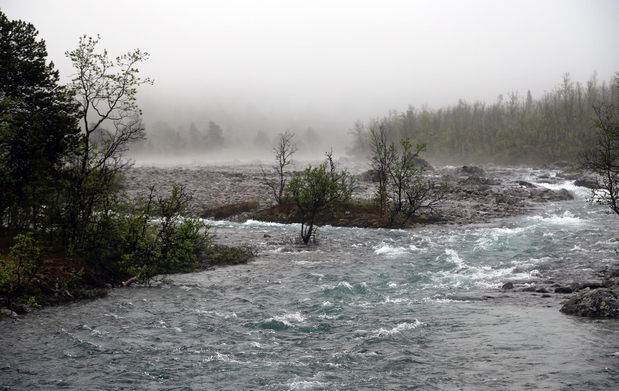 Soerlenangsbotn im Stormyra Naturreservat, Juni 2019, Foto:Ackmann