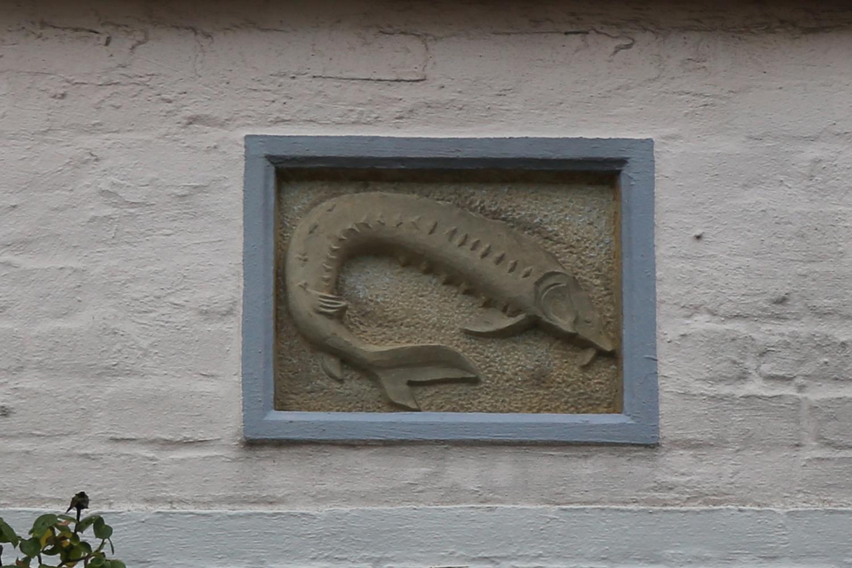 Hausmarke Stör, Friedrichstadt